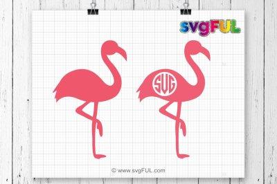 Flamingo Svg, Flamingo Silhouette, Zoo Svg, Animal Svg, Beach Svg, SVG