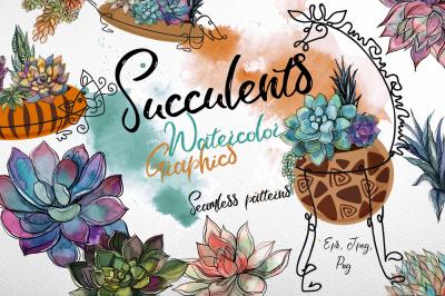 Succulents. Watercolor. Graphics.