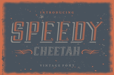Speedy Cheetah - vintage display font