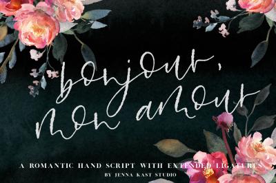 Bonjour Mon Amour - Hand Lettered Font