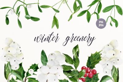 Winter greenery clip art
