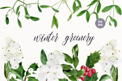 Winter greenery clip art