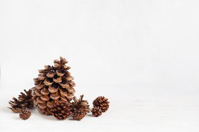 Pine cones on the white wooden table