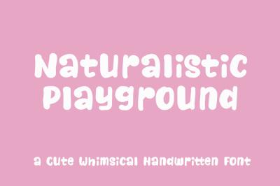 Naturalistic Playground