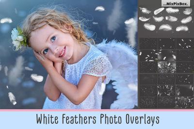 White Feathers Overlays