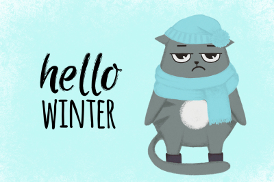 Hello winter cat