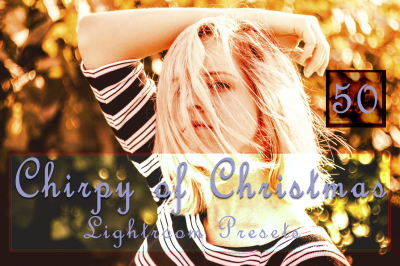 Chirpy of Christmas Lightroom Presets