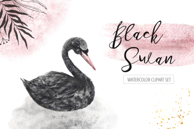Watercolor Black Swan Set