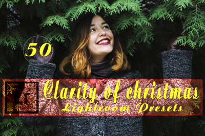Clarity of Christmas Lightroom Presets