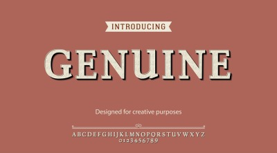 Genuine vector typeface.For labels and different type designs