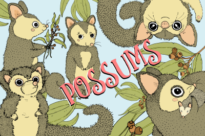 Possums | 5 cute images | Clip art illustrations | PNG/JPEG