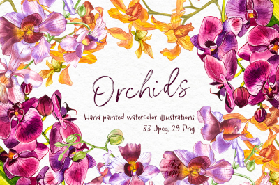 Orchids branch in botanical style