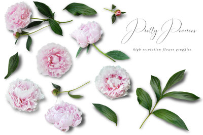 Pretty Peonies Flower Graphics