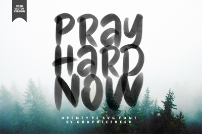Pray Hard Now - 30% OFF - SVG Font