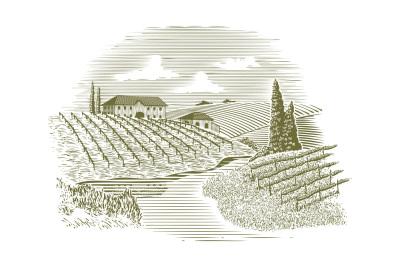 Woodcut Vineyard and Stream