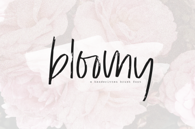 Bloomy - Chic Brush Font