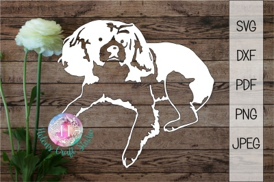 Cavalier King Charles Spaniel SVG, DXF, PDF, PNF and JPEG