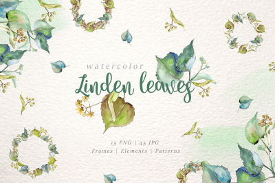 linden leaves Watercolor png