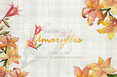 Amaryllis Watercolor png