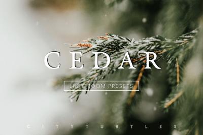 Desktop & Mobile Subtle Moody CEDAR Lightroom Presets Collection