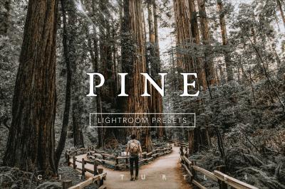 Desktop & Mobile Warm Moody PINE Lightroom Presets Collection