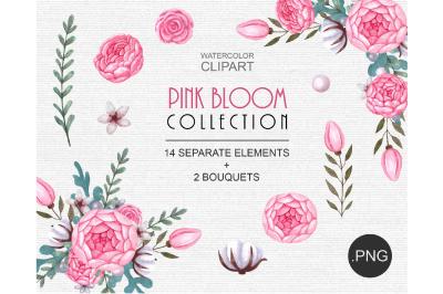 Floral Watercolor Elements Clipart
