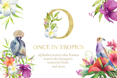 ONCE IN TROPICS