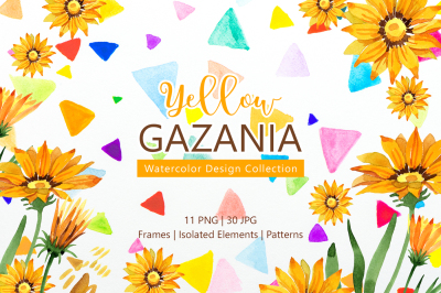 Yellow gazania Watercolor png