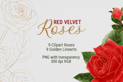 Watercolor Red Velvet Roses & Golden Lineart Collection