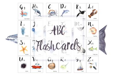 ABC Ocean Flashcards / Banner