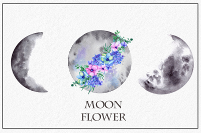 Moon flower. Watercolor clipart