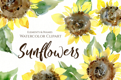 Watercolor Sunflower Flowers Leaves PNG