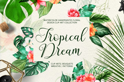 Tropical Dream-watercolor set