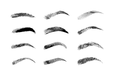 Eyebrow shapes. Various types of eyebrows.