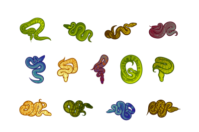 Snakes illustration set. Colored, line and silhouette styles