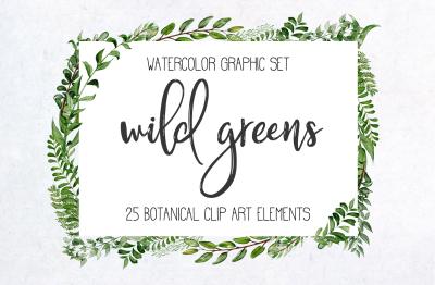 Wild Greens Botanical Watercolor Graphics