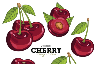 Cherry with Leaves, Vector. Isolated on White Background.