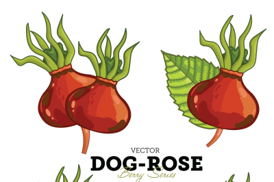 Dog-Rose with Leaves