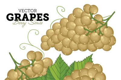 Grape Bunch, Grape Leaves, Grape Vector, Cartoon illustration of Grape