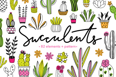 Succulents Illustrations + Patterns