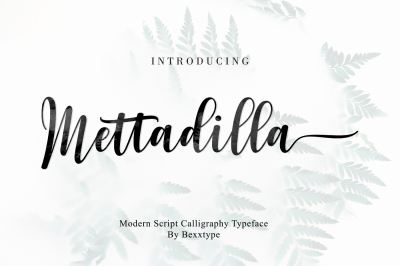 Mettadilla Script||Winter Collection
