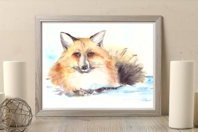 Mister Fox - Watercolor Illustration