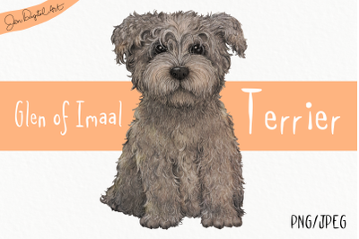 Glen of Imaal Terrier -Grey | Clip art dog illustration