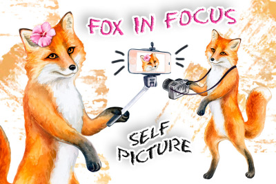 Fox in focus. Self picture