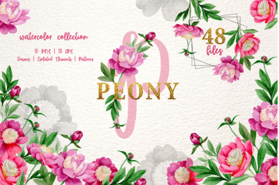 Pink Peony Tenderness Watercolor png