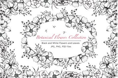 Black and White Botanical Collection