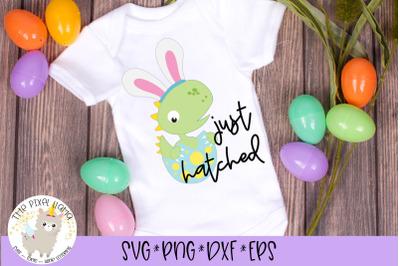 Just Hatched Dinosaur Easter SVG Cut File