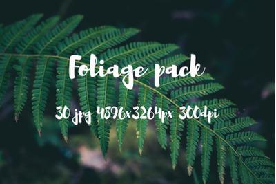 Foliage photo pack