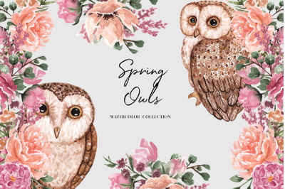 Spring Owls Watercolor Collection