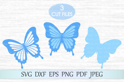 Butterfly svg, Butterflies svg file, Butterfly wall decor